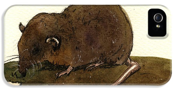 Mice iPhone 5 Case - Shrew Mouse by Juan  Bosco