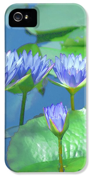 iPhone 5 Case - Silken Lilies by Holly Kempe