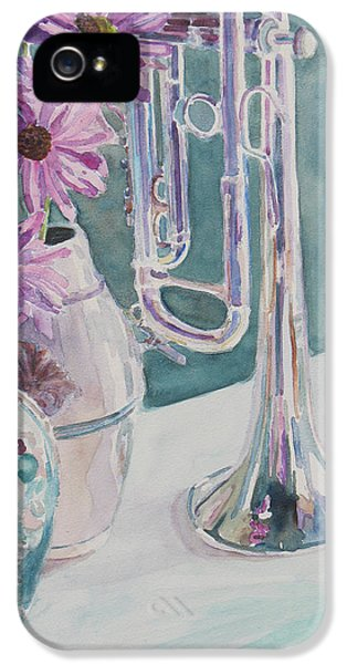 Silver And Glass Music IPhone 5 Case