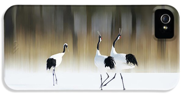 Crane iPhone 5 Case - Sing A Song Of Love by Ikuo Iga