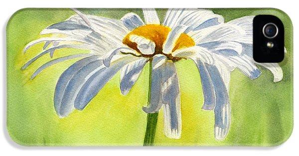 Daisy iPhone 5 Case - Single White Daisy Blossom by Sharon Freeman