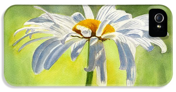 Single White Daisy Blossom IPhone 5 / 5s Case by Sharon Freeman