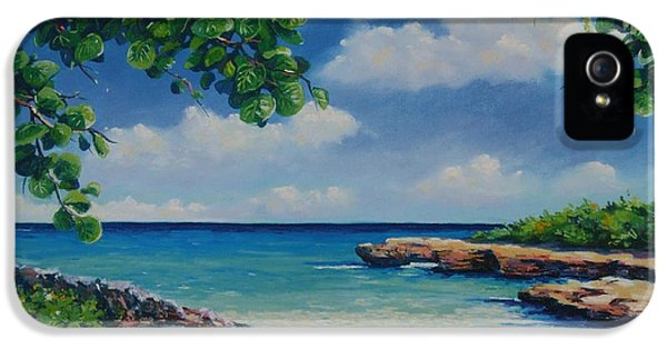 Smith Cove 16x23 IPhone 5 Case by John Clark