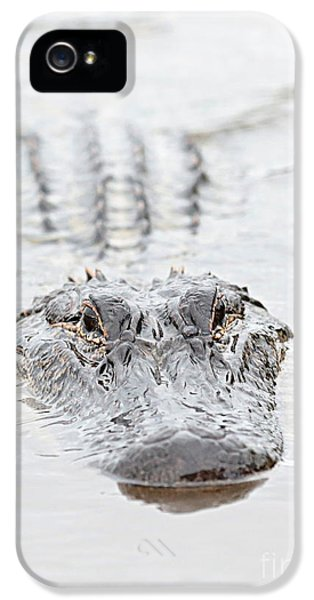 Sneaky Swamp Gator IPhone 5 Case