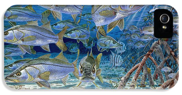 Snook Cruise In006 IPhone 5 Case by Carey Chen