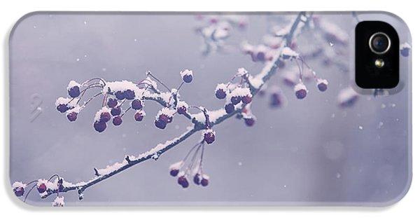 Snowberries IPhone 5 Case