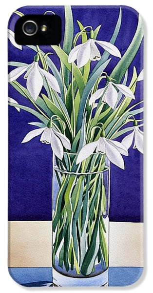 Snowdrops  IPhone 5 Case by Christopher Ryland