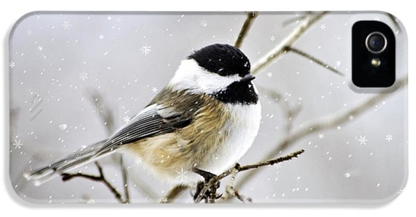 Snowy Chickadee Bird IPhone 5 / 5s Case by Christina Rollo
