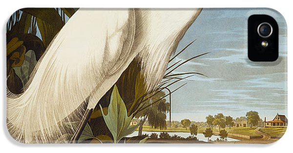 Snowy Heron Or White Egret IPhone 5 Case by John James Audubon