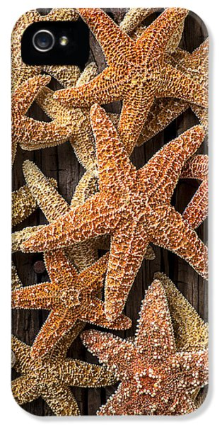 So Many Starfish IPhone 5 Case