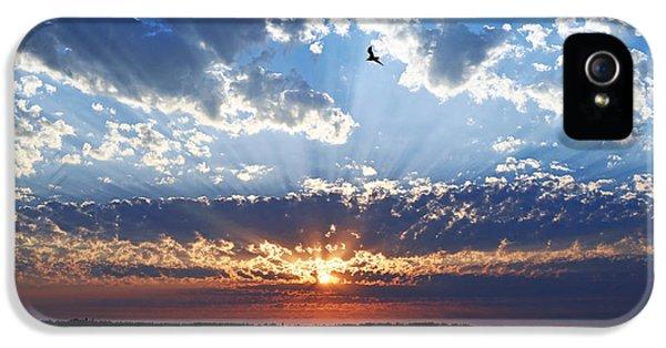 Soaring Sunset IPhone 5 Case