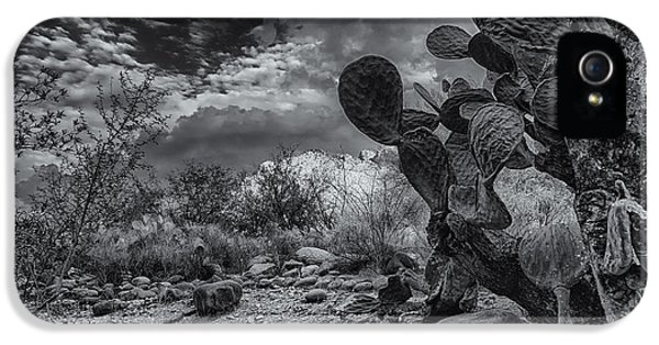 IPhone 5 Case featuring the photograph Sonoran Desert 15 by Mark Myhaver