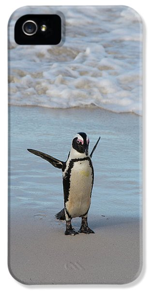 South Africa, Cape Town, Simon's Town IPhone 5 Case
