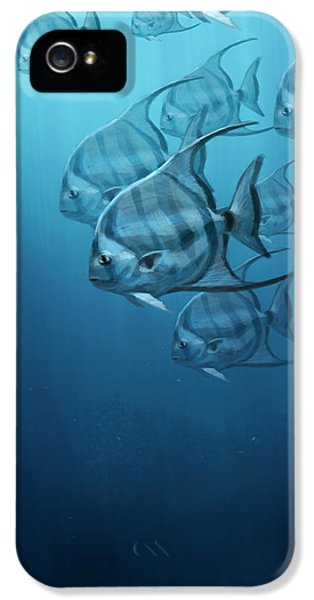 Spade Fish IPhone 5 Case by Aaron Blaise