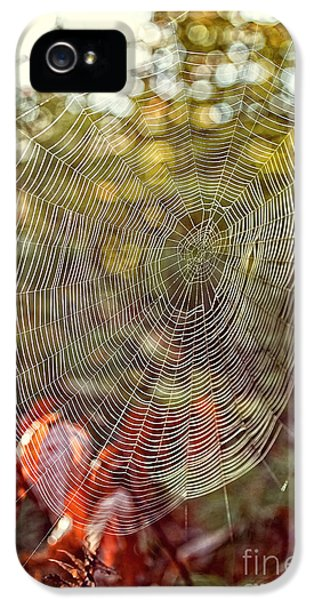 Spider Web IPhone 5 Case by Edward Fielding