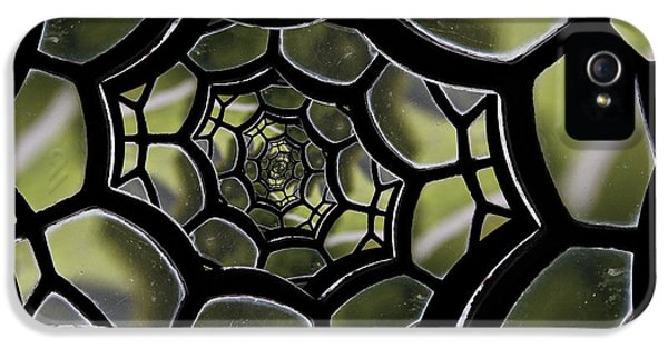 IPhone 5 Case featuring the photograph Spider's Web. by Clare Bambers
