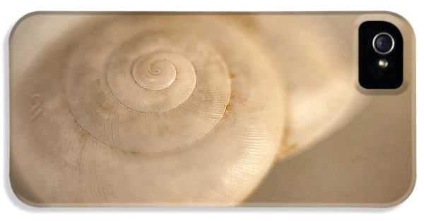 Spiral Shell 2 IPhone 5 Case