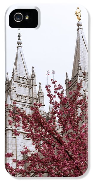 Spring At The Temple IPhone 5 Case by Chad Dutson