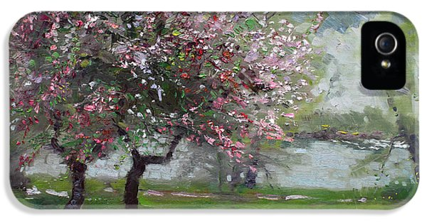 Spring By The River IPhone 5 Case