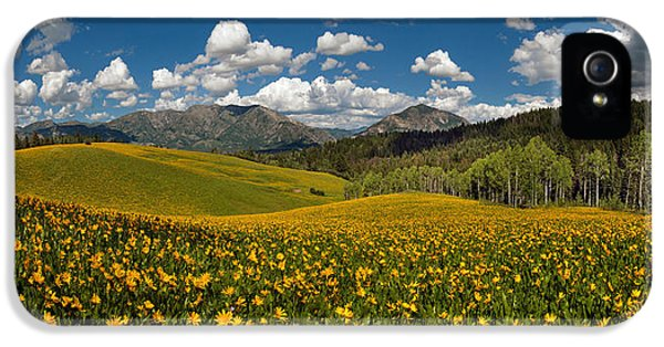 Spring Delight IPhone 5 Case by Leland D Howard