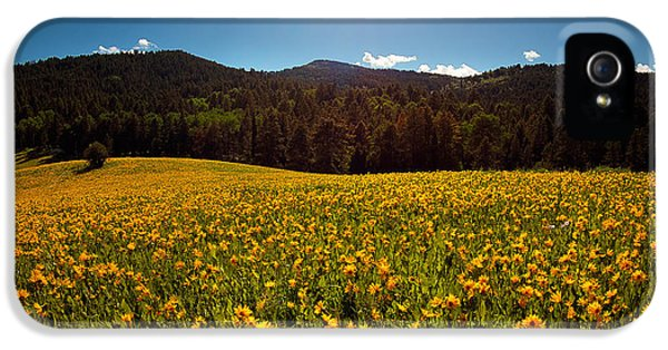 Spring Meadow IPhone 5 Case by Leland D Howard