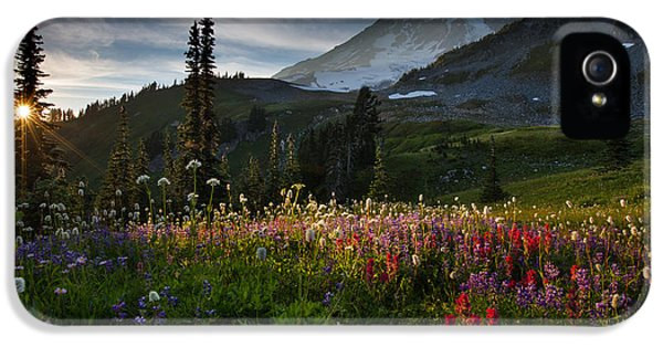 Seattle iPhone 5 Case - Spring Time At Mt. Rainier Washington by Larry Marshall
