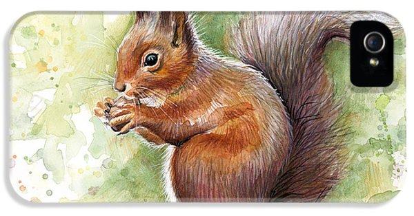 Squirrel iPhone 5 Case - Squirrel Watercolor Art by Olga Shvartsur