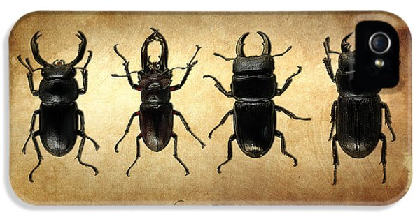 Stag Beetles IPhone 5 Case by Mark Rogan