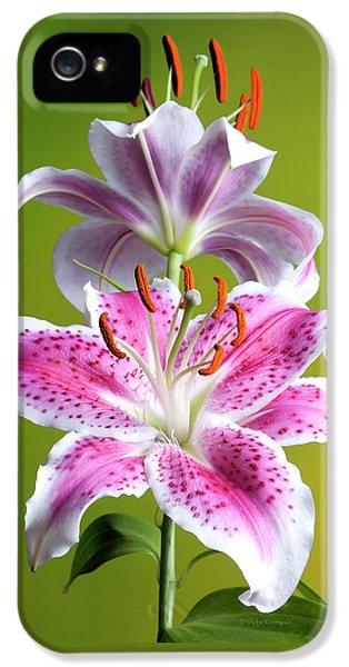 Star Gazer Lily IPhone 5 Case