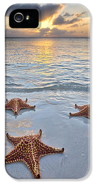 Starfish Beach Sunset IPhone 5 Case