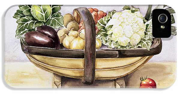 Still Life With A Trug Of Vegetables IPhone 5 / 5s Case by Alison Cooper