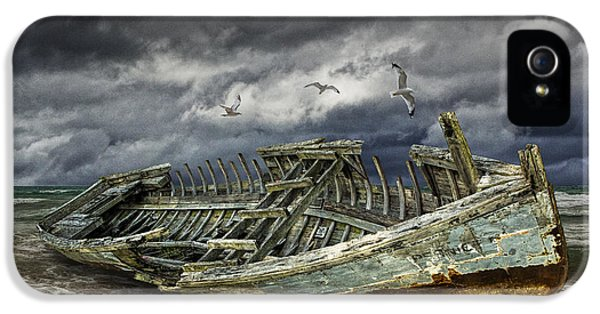 Stranded Wooden Shipwreck IPhone 5 Case by Randall Nyhof