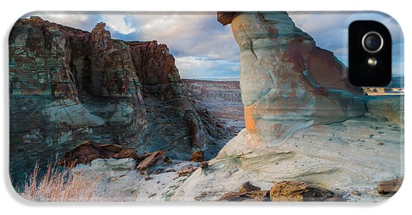Stud Horse Point 2 IPhone 5 Case