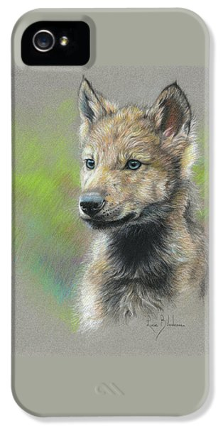 Wolves iPhone 5 Case - Study - Baby Wolf by Lucie Bilodeau