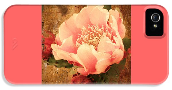 Stunning Pink Prickly Pear IPhone 5 Case by Beverly Guilliams