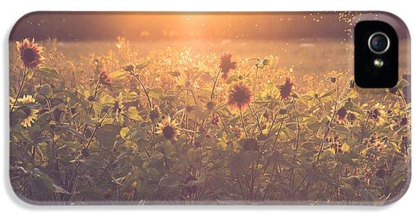 Summer Evening IPhone 5 Case by Chris Fletcher