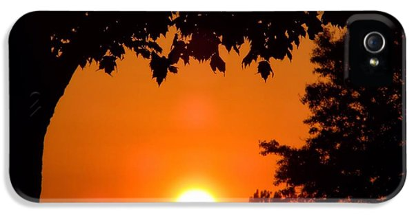 Summer Sunrise Right Side IPhone 5 Case