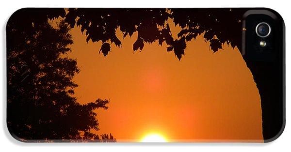 Summer Sunrise IPhone 5 Case