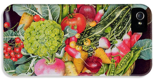 Summer Vegetables IPhone 5 Case by EB Watts