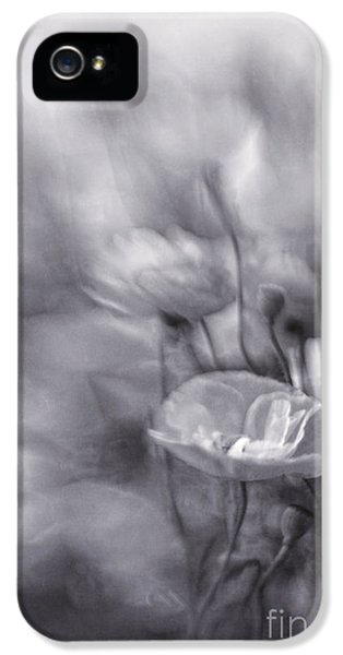 Summer Whispers Iv IPhone 5 Case by Priska Wettstein