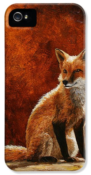 Sun Fox IPhone 5 Case by Crista Forest