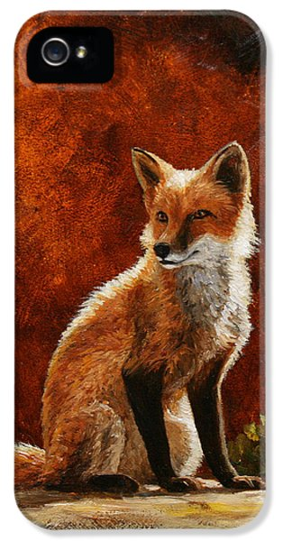 Sun Fox IPhone 5 Case