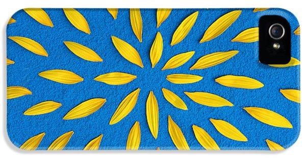 Sunflower Petals Pattern IPhone 5 Case by Tim Gainey