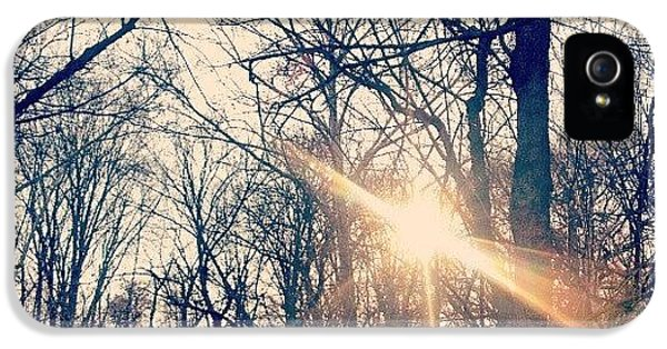 Sunlight Through The Trees IPhone 5 Case