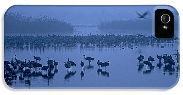 Sunrise Over The Hula Valley Israel 4 IPhone 5 Case by Dubi Roman