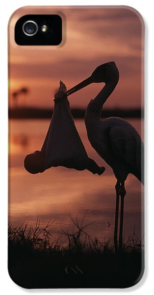 Sunrise Silhouette Of Stork Carrying IPhone 5 Case