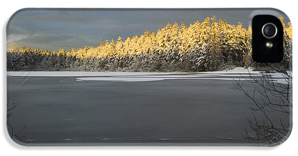 Sunset At Cranberry Lake Anacortes IPhone 5 Case by Yulia Kazansky
