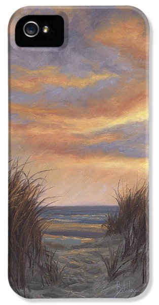 Beach Sunset iPhone 5 Case - Sunset By The Beach by Lucie Bilodeau