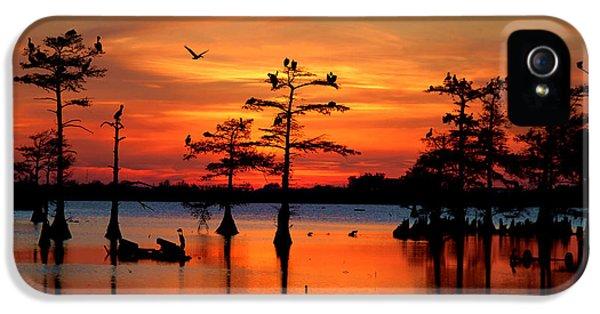 Sunset On The Bayou IPhone 5 Case