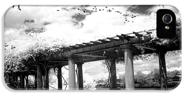 Surreal Augusta Georgia Black And White Infrared  - Riverwalk River Front Park Garden   IPhone 5 Case by Kathy Fornal